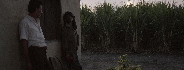 Noticia: La Tierra y La Sombra, triunfo histórico para el cine colombiano