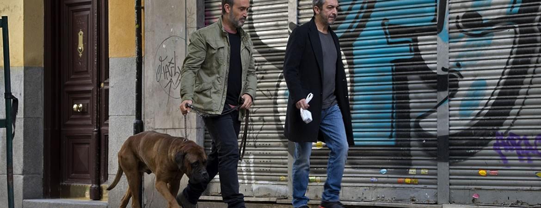 Un perro y dos buenos amigos que enfrentan la enfermedad, lo nuevo de Cesc Gay
