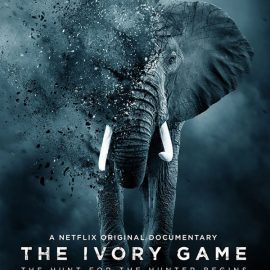 Leonardo Dicaprio y Netflix estrenan el documental The Ivory Game