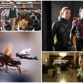 Reseña AntMan And The Wasp, una aventura de tamaño familiar