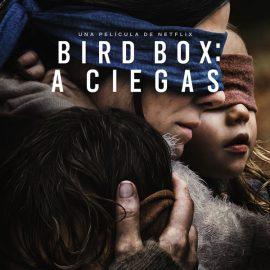 Bird Box, nueva película de la ganadora del Oscar Susanne Bier con Sandra Bullock