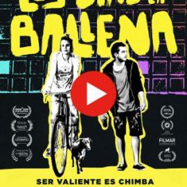 Sala virtual en la Cinemateca de Bogotá para no perder la costumbre de ver su oferta